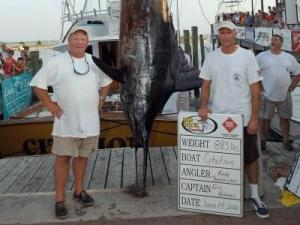 The boat Citation caught this 883 pound blue marlin on the first day of the 2010 Big Rock Blue Marlin tournament.