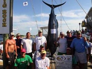 Crew from the Hatteras Fever II proudly poses with their 465-pound catch Wednesday, June 12, 2013, to take the lead in the tournament with a top prize of more than $1 million.
