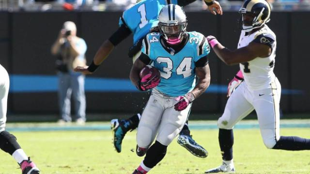 The Carolina Panthers returned home Sunday, looking to get their third win of the year.