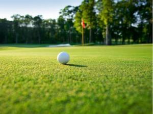 Generic golf graphic