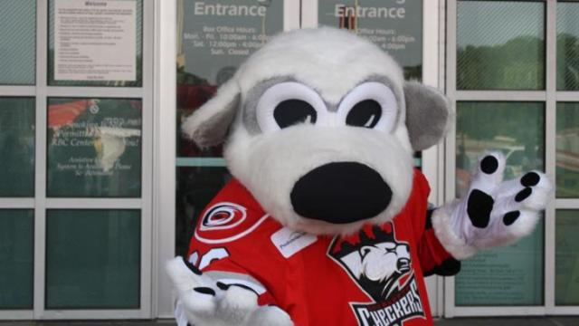 The Canes' AHL team, the Charlotte Checkers were represented.