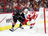 Canes fall to Red Wings 3-1