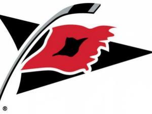 Carolina Hurricanes secondary logo