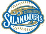 Holly Springs Salamanders logo