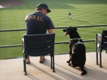 Best friends watching baseball