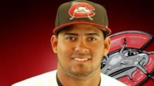 IMAGE: Mudcats swamped in series loss at Frederick