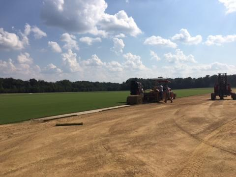 UNC turf grows at Charlotte-based company