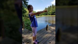 My Fish Friday, July 2017