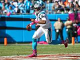 Panthers rally to beat Bears, 31-24