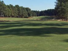 Pinehurst No. 2: Hole 8