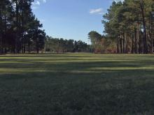 Pinehurst No. 2: Hole 15