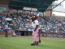 Wool E. Bull on the 4th of July
