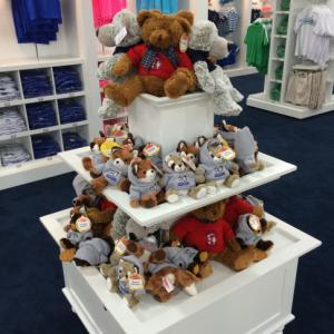 US Open bears